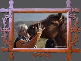 Навчання: Походження, типи, напрямки селекції і використання коней гуцульської породиі. II тур 28-30.10.2014r