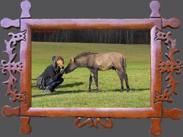 Навчання: Основні цілі і принципи розведення коней гуцульської породи