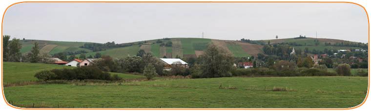 Zd IZ PIb Odrzechowa, widok z pastwisk