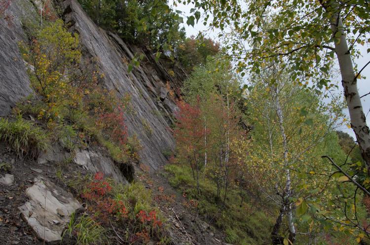 Каньйон Віслокa в Мимоні